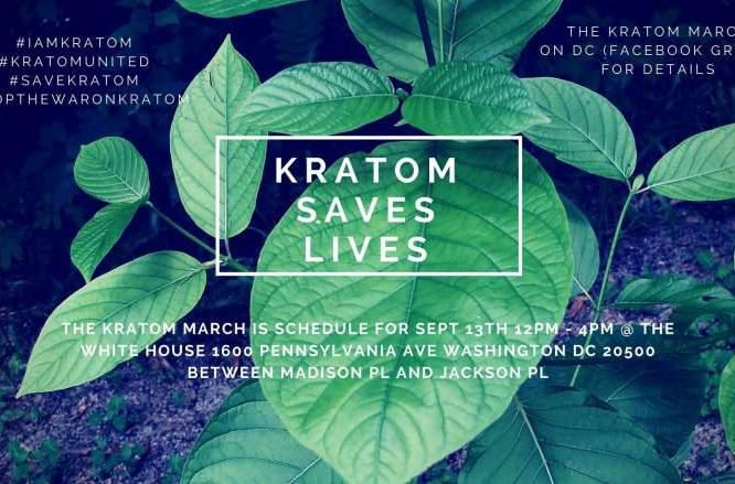 The Mayans' Lost Guide To Greatest Kratom